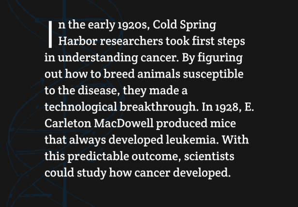 Cold Springs Harbor breed cancer 1928
