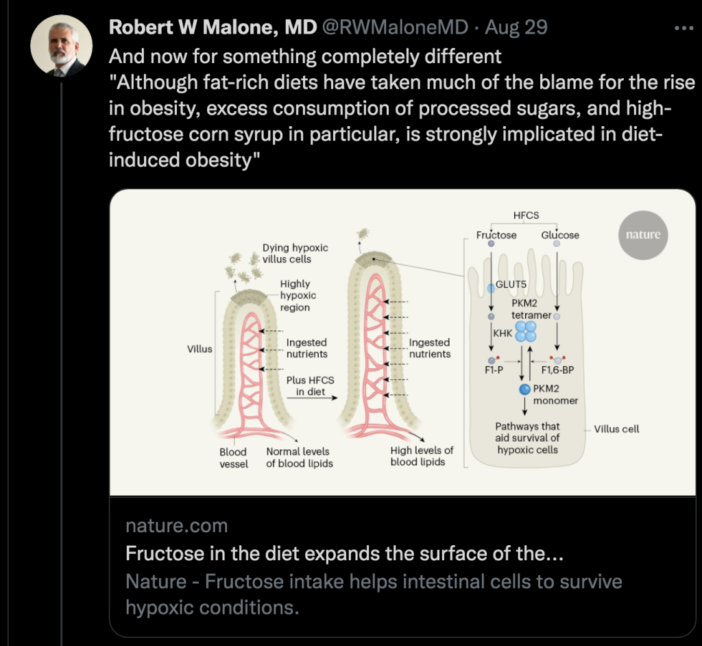 Dr. Robert Malone Fructose Obesity